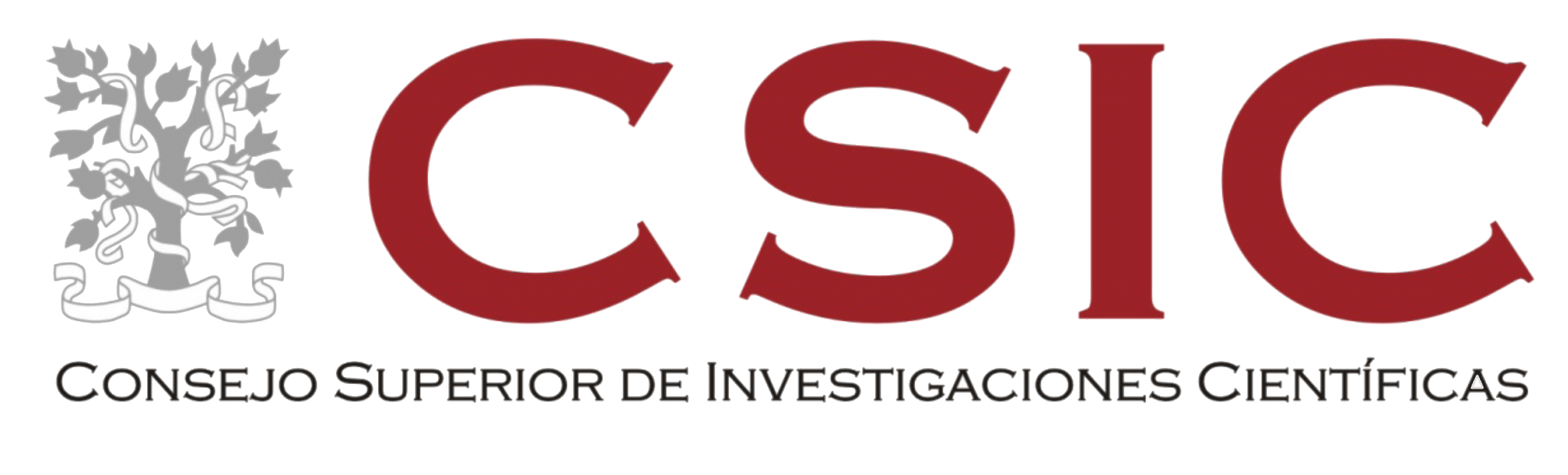 CSIC_logo copy